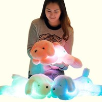 50cm Colorful LED Glowing Dogs Luminous Plush Children Toys For Girl,Night Dog Stuffed Plush Toys For Kids Toys