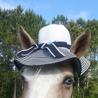 Striped Floppy Brim Hat for Horses - Black and White Sun Hat for Horse - Horse Costume