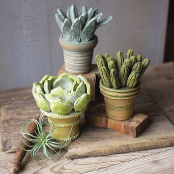 Clay Succulents With Pots (Set of 3)