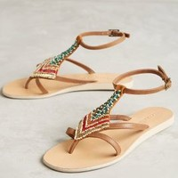 Cocobelle Arrow Sandals