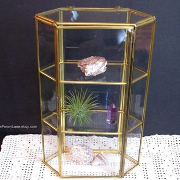 Vintage Brass Glass Curio Display Case Shelf Box