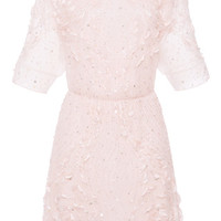 Rose Embroidered A-line Dress