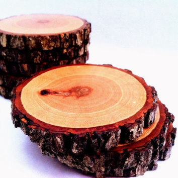 Log Coasters - Hickory