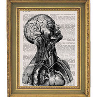 Face Muscle Tissue- Vintage Dictionary Book Print-  8x10