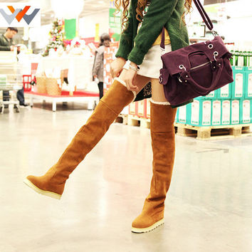 Knee-High Pointed Toe Faux Fur Suede Flat Heels Women's Winter Boots