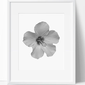 Digital Print, Flower Printable, Printable Art, Flower Art, Wall Art, 8x10, Instant Download, Hibicus Art, Nature, Black and White