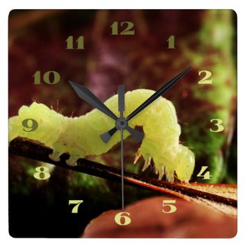 Wildlife Outdoorsy Green Garden Inchworm Custom Square Wall Clock