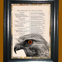 Hawk Portrait -- Vintage Dictionary Book Page Art - Upcycled Page Art - Collage Wall Art - Mixed Media Art