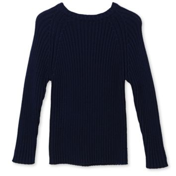 Stella McCartney Boys Navy Blue and Green Fitted Sweater