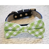 Plaid Green Dog Bow tie with Collar, Spring wedding dog accessory, plaid wedding