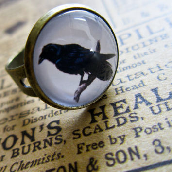 Vintage Raven Ring  Steampunk Cabochon Crow by DubiousDesign