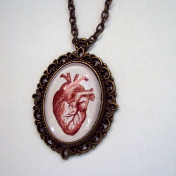 Heart Collector Pendant with Link Chain Vintage Red Heart Illustration