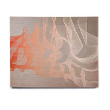 "Rosa Picnic ""Indifference"" Coral Gray Abstract Contemporary Digital Vector Birchwood Wall Art"