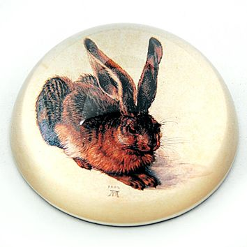 Rabbit Drawing Glass Dome Desk Paperweight by Albrecht Durer 3W
