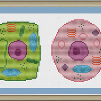 Plant and animal cell: nerdy cell biology cross-stitch pattern