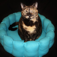 Cat bed, dog bed, kitty bed, round bed, fleece bed, deep bed, cup bed, pet bed, turquoise, machine washable, dryer safe, 16 inch