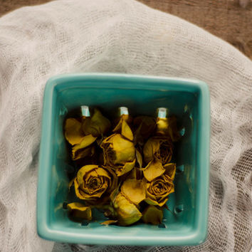 Yellow roses, still life photo, teal, nursery wall decor, whimsical, dried flowers, botanical, flower photography,fine art photo, rustic art
