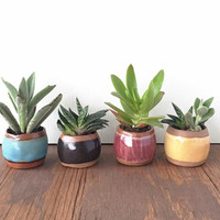 Petite Ceramic Planter / Small Pot for Succulents, Cactus, Air Plant / Blue Green, Black, Purple, Yellow / The Knoll Planter / MADE TO ORDER