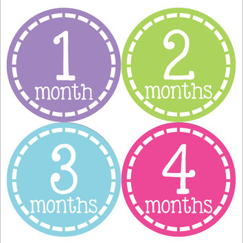 Baby Girl Monthly Baby Stickers Style #345