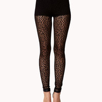 Leopard Lace Leggings | FOREVER 21 - 2060704451