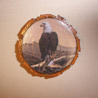 Eagle Magnet, Upcycled Tree Branch Slice, Decoupaged Wooden Magnet of a Bald Eagle