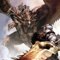 Monster Hunter Rathalos video game poster