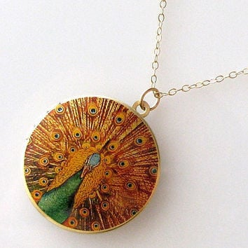 gold locket necklace, 14k gold filled chain, peacock locket, photo locket necklace, altered art pendant jewelry, gold necklace