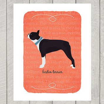 Boston Terrier Breed Custom Dog Art Print