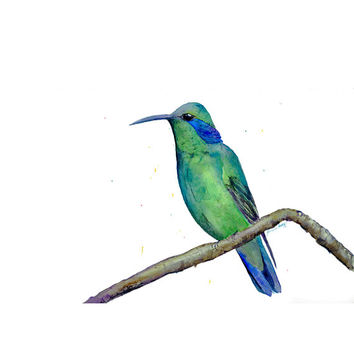 Hummingbird / Green Bird / Green Violetear / Metallic Green Hummingbird / Watercolor Painting / 8x10 / Giclee Print / by Suisai Genki