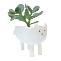White Cat Planter - White Ceramic Animal Plant Pot - Succulent or Cacti Planter