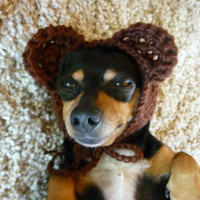 Bear Dog Hat CROCHET PATTERN Crochet Dog Hat Pattern Crochet Dog Costume Pattern Crochet Dog Supplies Pattern Crochet Dog Accessories Cute