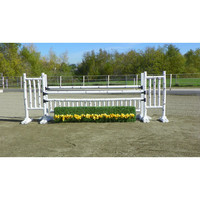 Birch Eight Jump Set | Dover Saddlery