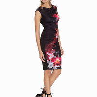 Floral Graphic Print Sleeveless Sheath Dress