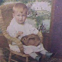 Antique Stereoview Baby in WIcker Chair with Bunny Rabbit on Lap Victorian Photograph Card Stereo Optic Photo
