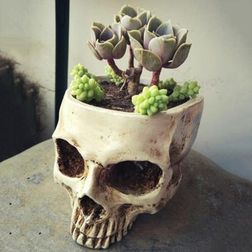 Resin Skull Head Flower Plant Pot Potter Vase