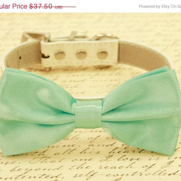 Aqua Mint bow tie attached to leather dog collar, Chic Dog Bow tie, Pet Wedding Accessories, 2015 Wedding Accessories, Aqua Mint Wedding