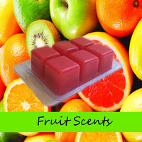 6 Hand Poured Fruit Scented Candle Tarts Wax Melts in Clamshell