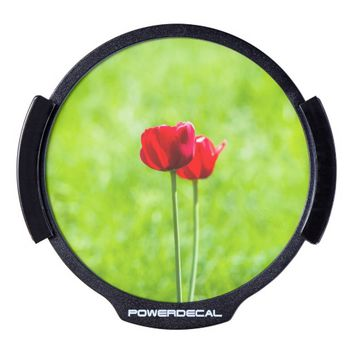 Two red tulip flowers LED car decal