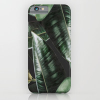 Tropical Plants iPhone & iPod Case by lostanaw
