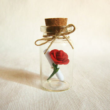 Message in a bottle, Will you marry me or other  messages,Custom Gift, Mother's day gift idea,MADE TO ORDER