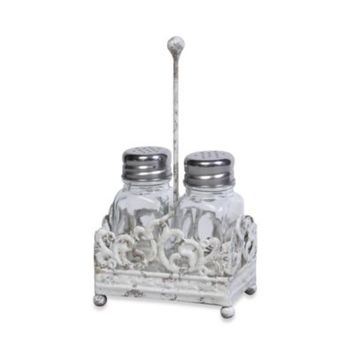 Metal Salt and Pepper Shaker Caddy with Glass Shakers