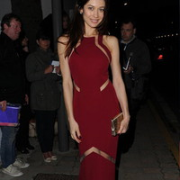 Sheath / Column High Neck Floor-length Red Celebrity Dresses Inspired By Olga Kurylenko [10124870] - US$166.99 : DressKindom