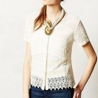 Buttoned Lace Midi Blouse by Let Me Be Ivory