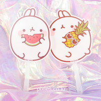 Molang Fruits Fan