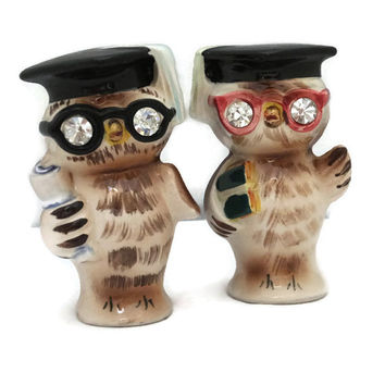 Vintage Owls Salt and Pepper Shakers Anthropomorphic Kitchen Collectible with Rhinestone Eyes
