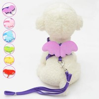 Cute Small Pet Dogs and Cats Leashes