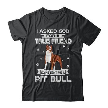 I Asked God For A True Friend So Sent Me Pitbull Dog