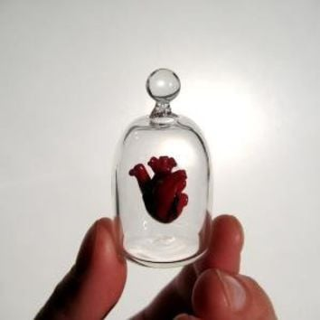 Heart in a Jar Hand Blown Glass Miniature Anatomically by kivaford
