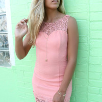 Bellaire Blush Lace Detail Bodycon Cocktail Dress