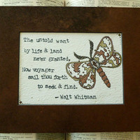 Graduation Gift  Walt Whitman  Untold Want  by ThreeSummerDaysShop